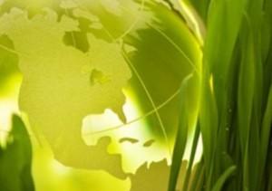 arte_biodiesel